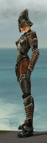 File:Warrior Kurzick Armor F gray side.jpg