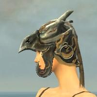 File:Warrior Silver Eagle Armor F dyed head side.jpg