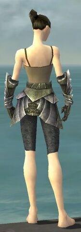 File:Warrior Templar Armor F gray arms legs back.jpg