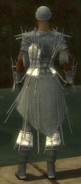Elementalist Primeval Armor M gray back