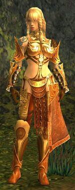 Jora Armor Norn Front