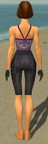 File:Mesmer Elite Rogue Armor F gray arms legs back.jpg