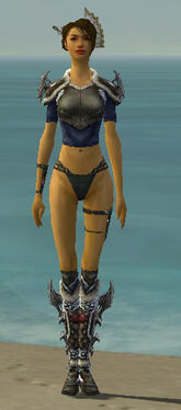 Assassin Norn Armor F gray chest feet front