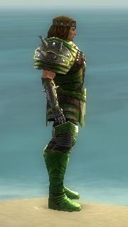 Warrior Deldrimor Armor M dyed side