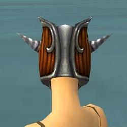 File:Warrior Wyvern Armor F dyed head back.jpg