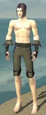 Elementalist Elite Kurzick Armor M gray arms legs front