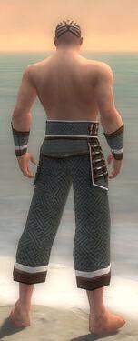 Monk Elite Judge Armor M gray arms legs back