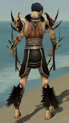 File:Necromancer Ancient Armor M gray back.jpg