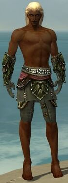 Ranger Elite Luxon Armor M gray arms legs front