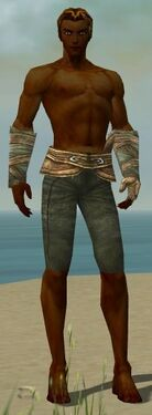 Ranger Tyrian Armor M gray arms legs front