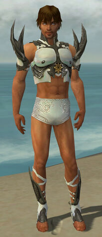 File:Paragon Elite Sunspear Armor M gray chest feet front.jpg