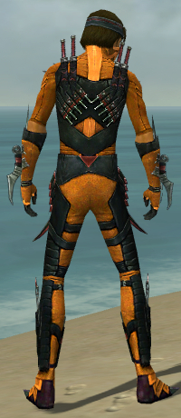 File:Assassin Elite Canthan Armor M dyed back.jpg