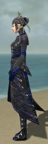 File:Necromancer Elite Cultist Armor F dyed side.jpg