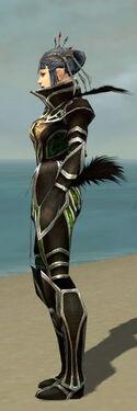 Necromancer Elite Sunspear Armor F dyed side