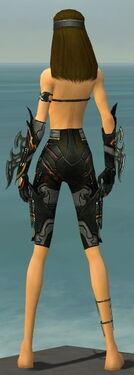 Assassin Elite Kurzick Armor F gray arms legs back