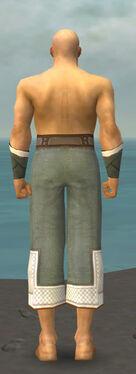 Monk Krytan Armor M gray arms legs back