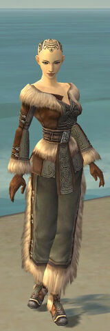 File:Monk Norn Armor F gray front.jpg
