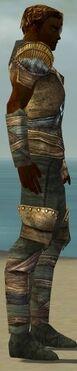 Ranger Tyrian Armor M gray side alternate