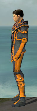 Elementalist Krytan Armor M dyed side