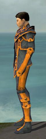 File:Elementalist Krytan Armor M dyed side.jpg