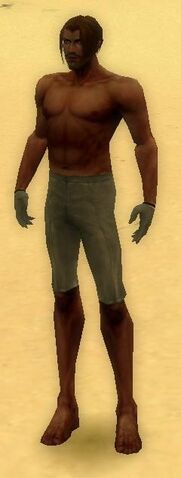 File:Mesmer Norn Armor M gray arms legs front.jpg