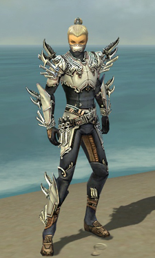 File:Assassin Asuran Armor M dyed front.jpg