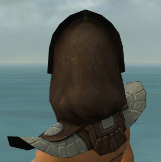 File:Dervish Ancient Armor F gray head back.jpg