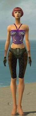 Mesmer Ancient Armor F gray arms legs front