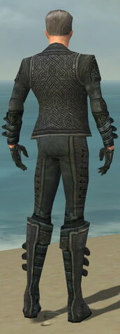File:Mesmer Elite Rogue Armor M gray back.jpg