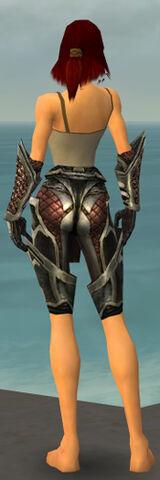 File:Warrior Elite Kurzick Armor F gray arms legs back.jpg