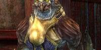 Talon Silverwing