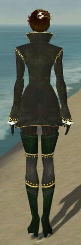 File:Mesmer Tyrian Armor F gray back.jpg