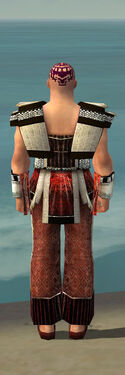 Monk Elite Sunspear Armor M dyed back