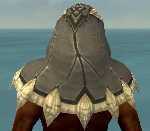 File:Dervish Norn Armor M gray head back.jpg