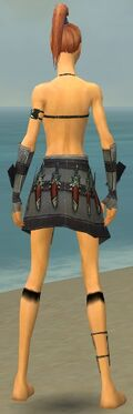 Assassin Elite Canthan Armor F gray arms legs back
