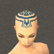 File:Monk Monument Armor F dyed head front.jpg