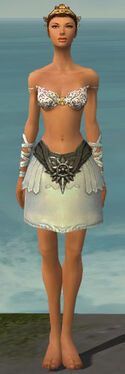Paragon Istani Armor F gray arms legs front