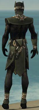 Ritualist Kurzick Armor M gray back