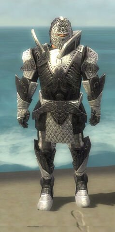 File:Warrior Elite Platemail Armor M dyed front.jpg