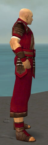 File:Monk Censor Armor M dyed side.jpg