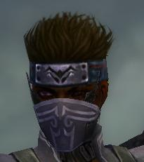 File:Assassin Luxon Armor M gray head front.jpg
