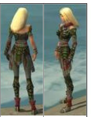 File:Low-quality ranger armor.jpg
