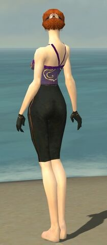 File:Mesmer Norn Armor F gray arms legs back.jpg