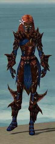 File:Ranger Primeval Armor F dyed front.jpg