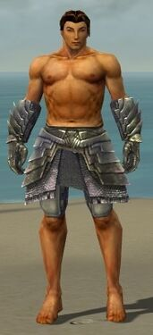 Warrior Templar Armor M gray arms legs front