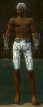 Elementalist Primeval Armor M gray arms legs front