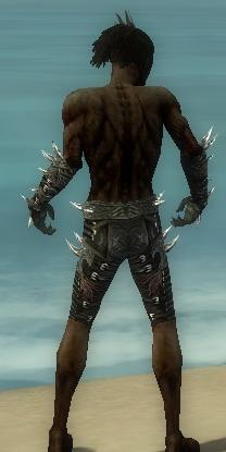 File:Necromancer Elite Canthan Armor M gray arms legs back.jpg