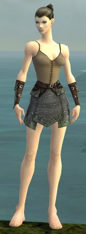File:Warrior Tyrian Armor F gray arms legs front.jpg