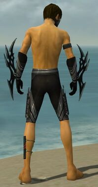 Assassin Vabbian Armor M gray arms legs back