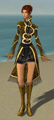 File:Elementalist Elite Canthan Armor F dyed front.jpg